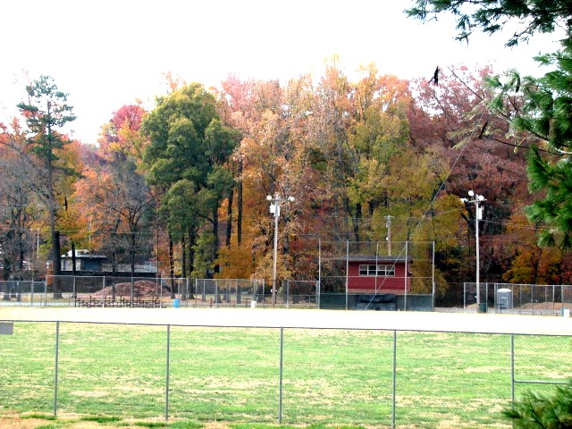 RCP Field in Fall